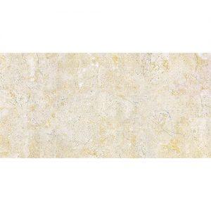 Gạch ốp tường Viglacera 30x60 BS3601