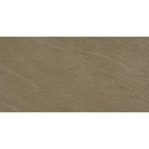 Gạch ốp tường Viglacera 30x60 BS3628