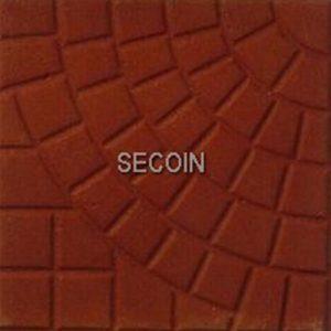 Gạch lát vỉa hè Secoin 25x25 OD-25-124