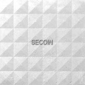 Gạch lát vỉa hè Secoin 25x25 OD-25-18
