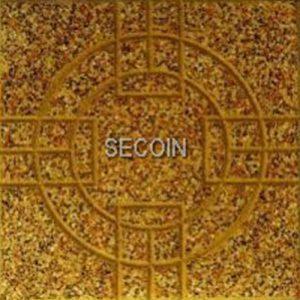 Gạch lát vỉa hè Secoin 30x30 OD-30-140