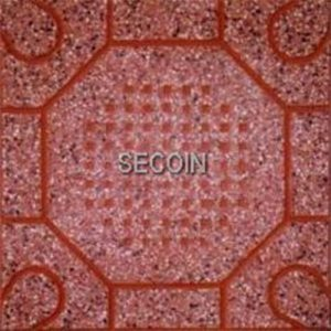 Gạch lát vỉa hè Secoin 30x30 OD-30-5