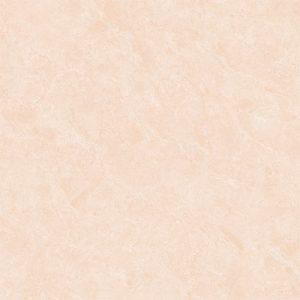 Gạch lát nền Viglacera 60x60 M6003