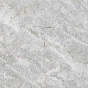 Gạch lát nền Ý Mỹ 600x600 P65011C