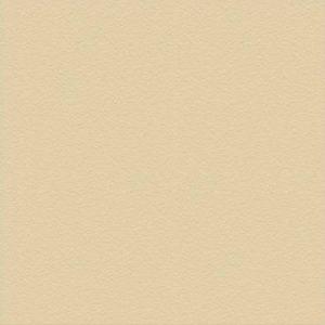 Gạch lát cotto Hạ Long 50x50 màu xám đá