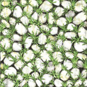 Gạch lát sân vườn 40x40 Đồng Tâm CLG003