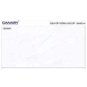 Gạch ốp tường 30x60 TTC Ceramic CB36041
