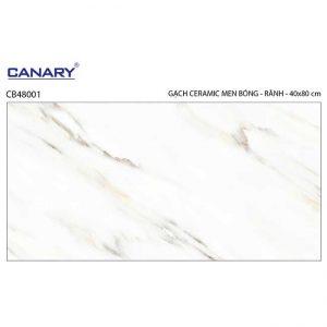 Gạch ốp tường 40x80 TTC Ceramic CB48001