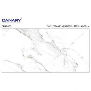 Gạch ốp tường 40x80 TTC Ceramic CB48003