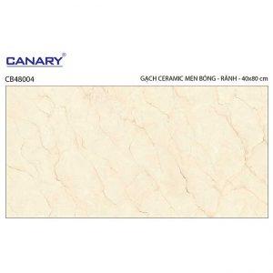 Gạch ốp tường 40x80 TTC Ceramic CB48004