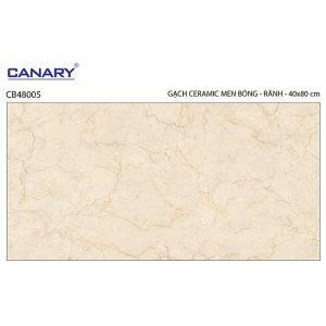 Gạch ốp tường 40x80 TTC Ceramic CB48005