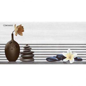 Gạch ốp tường 30x60 TTC Ceramic CDM36005