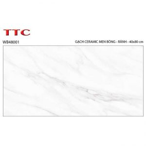 Gạch ốp tường 40x80 TTC Ceramic WB48001