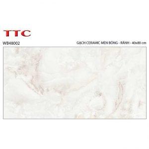 Gạch ốp tường 40x80 TTC Ceramic WB48002