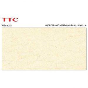 Gạch ốp tường 40x80 TTC Ceramic WB48003
