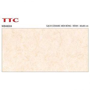 Gạch ốp tường 40x80 TTC Ceramic WB48004