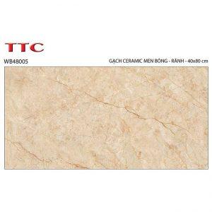 Gạch ốp tường 40x80 TTC Ceramic WB48005