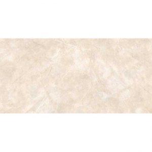 Gạch ốp tường 40x80 TTC Ceramic WB48006