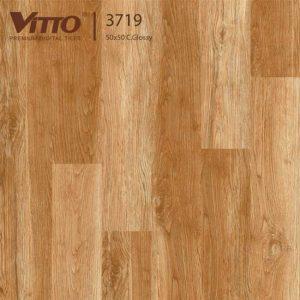 Gạch lát nền 50x50 Vitto 3719