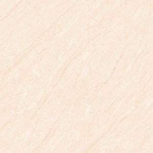 Gạch lát nền 60x60 TTC Ceramic CM66003