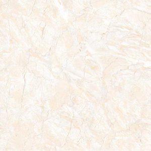 Gạch lát nền 60x60 TTC Ceramic CN66006