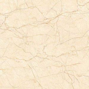 Gạch lát nền 60x60 TTC Ceramic CN66009