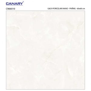 Gạch lát nền 60x60 TTC Ceramic CN66010
