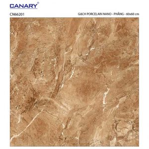Gạch lát nền 60x60 TTC Ceramic CN66201
