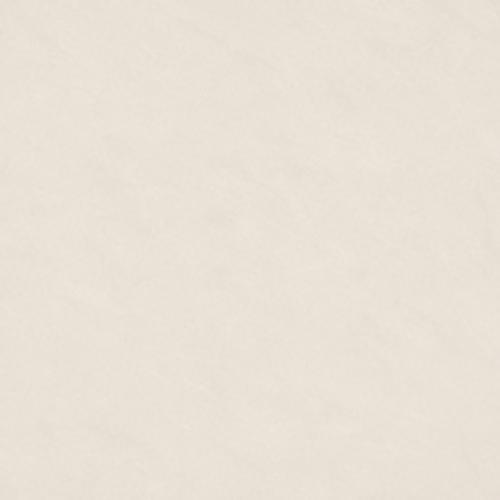 Gạch lát nền 60x60 Taicera P67542N