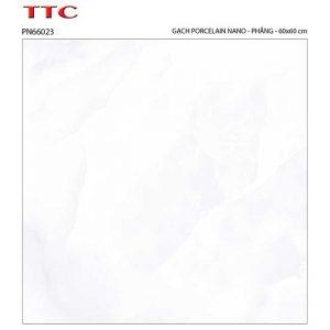 Gạch lát nền 60x60 TTC Ceramic PN66023