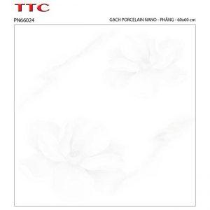 Gạch lát nền 60x60 TTC Ceramic PN66024