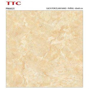 Gạch lát nền 60x60 TTC Ceramic PN66025