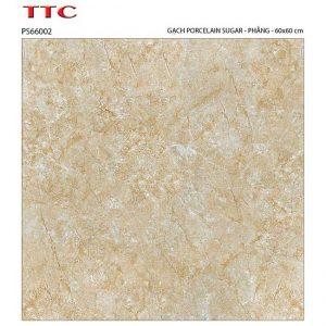 Gạch lát nền 60x60 TTC Ceramic PS66002