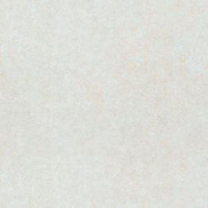 Gạch lát nền 60x60 Đồng Tâm 6DM02