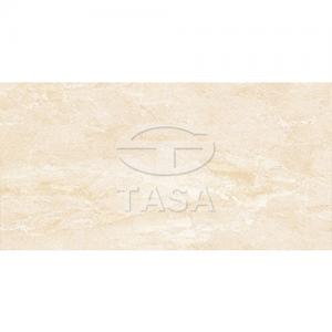 Gạch ốp tường 40x80 TASA 4819