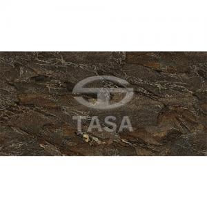 Gạch ốp tường 40×80 TASA 4821