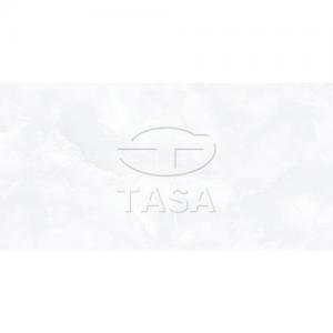 Gạch ốp tường 40x80 TASA 4909
