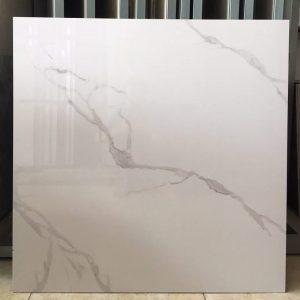 Gạch ốp lát Ý Mỹ vân mây trắng 60x60 P66001